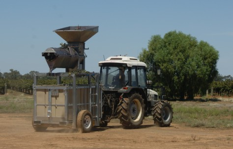 A Full Bin - Harvesting